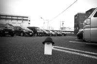 20180810-0811_渋谷・神保町・土浦・つくば(モノクロ超広角) (31)