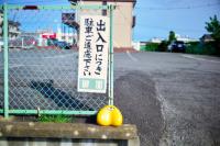 20180917 土浦(ライカカラー) (1)