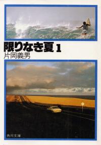 片岡義男『限りなき夏1』